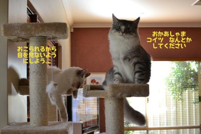 タワー攻防戦7