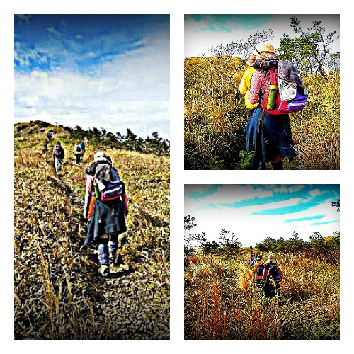 PicMonkey Collage1117