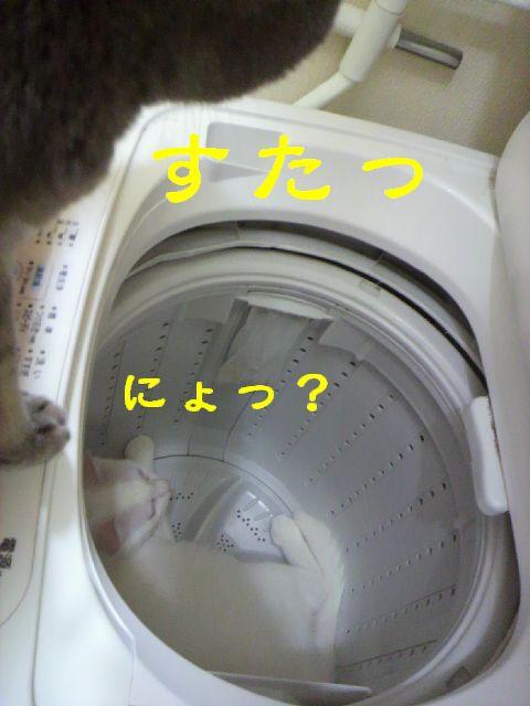 洗濯機13
