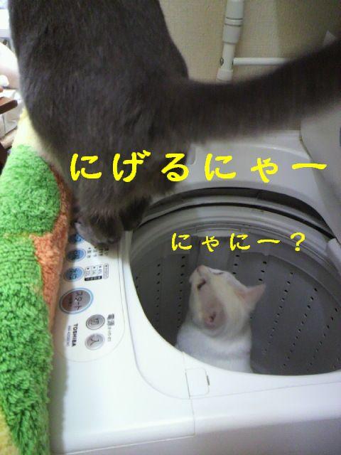 洗濯機18