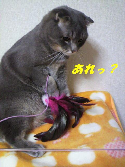 りっぷ10