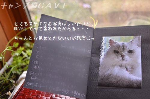 1308_5701.jpg