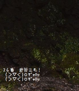 131014_6973a3.jpg