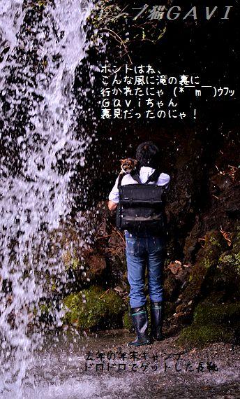 131014_6983.jpg