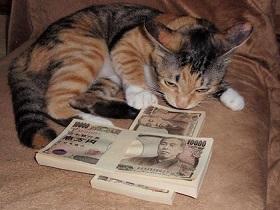 お金が欲しくて彼女のためにホモビデオに出ることになったwww