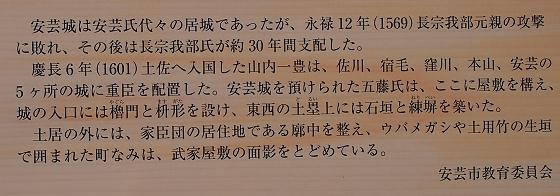 安芸城跡 説明