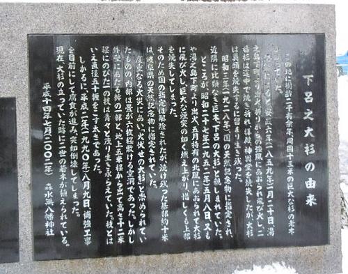 DSCN8526.jpg