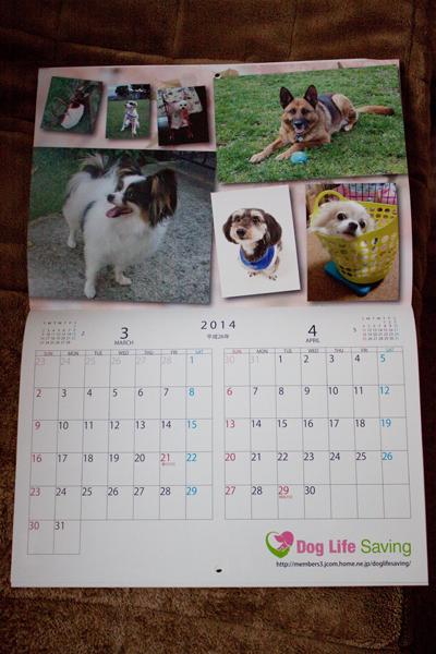 calendar2014_003.jpg