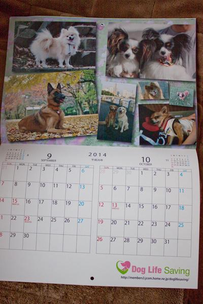 calendar2014_006.jpg