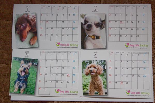 calendar2014_008.jpg