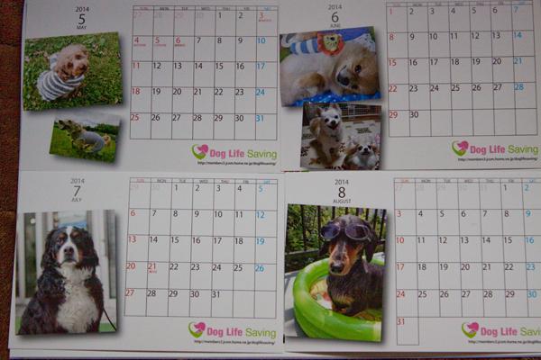 calendar2014_009.jpg