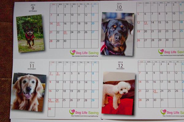 calendar2014_010.jpg