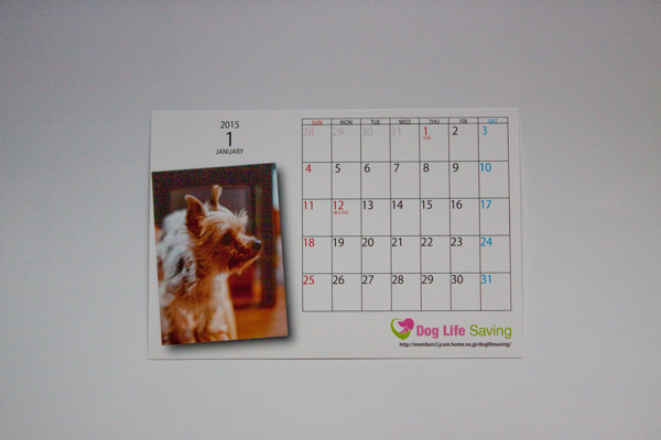 calendar2014_011.jpg