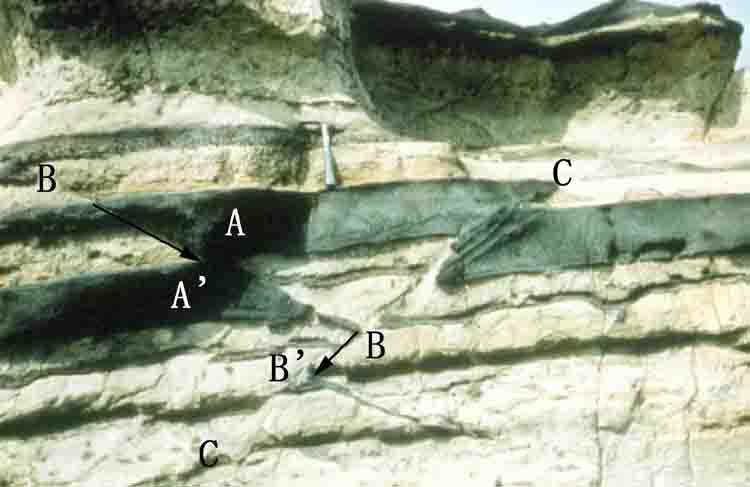 断層露頭の例