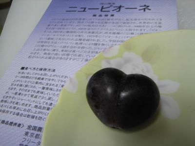 2011_10120018.jpg