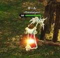 DragonsProphet_20141112_010745.jpg