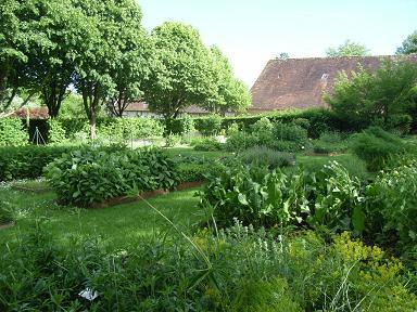 garden_06.jpg