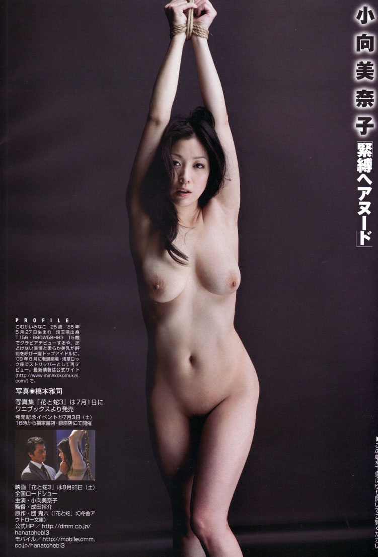 小向美奈子10
