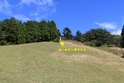 IMG_94640.jpg