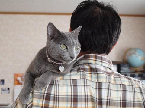 肩乗りニコ03(2011.05.22)