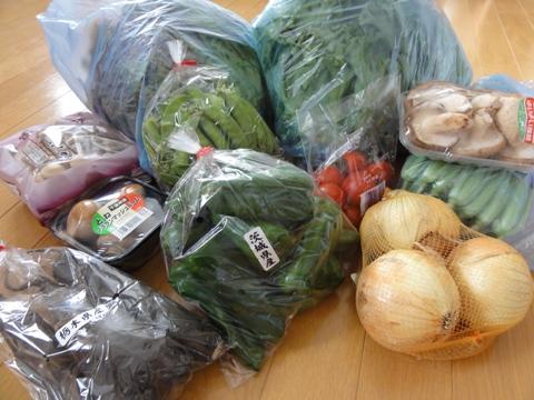 被災地野菜02(2011.05.28)