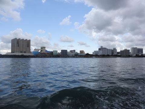 海中見物11(2013.08.12)