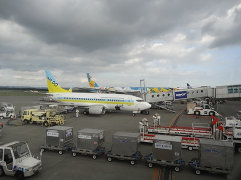 ニコライブルク空港(2013.08.13)
