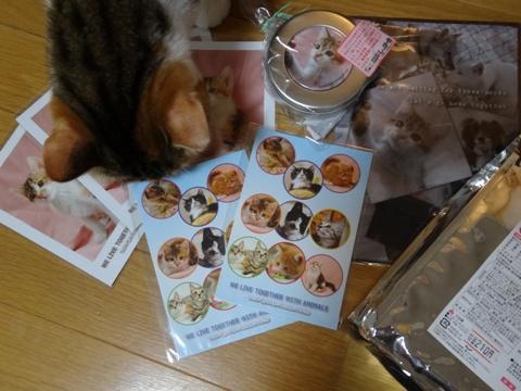 しっぽの会02(2013.12.15)
