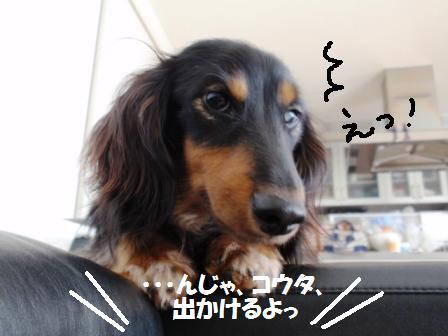01-200704059.jpg