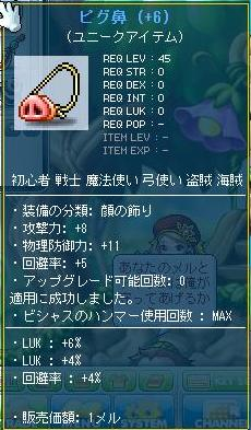 Maple110915_230825.jpg