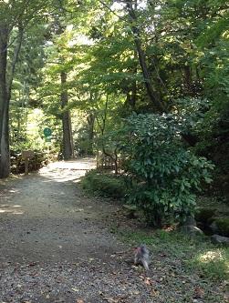 遊歩道で森林浴^^