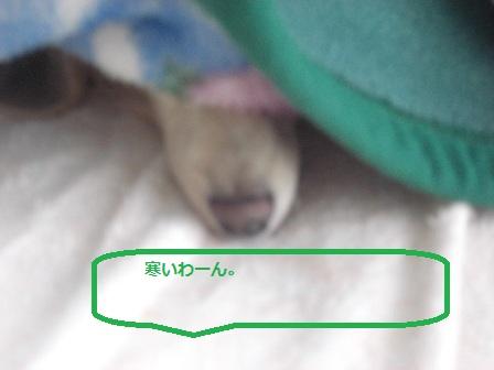 20111109007.jpg