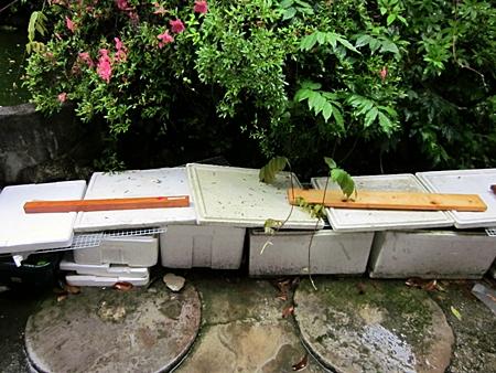 台風に備えた 屋外容器 三 五二八