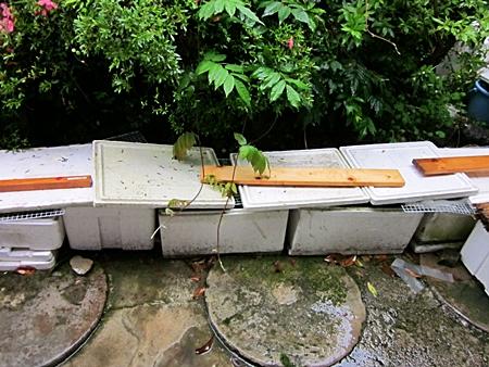 台風に備えた 屋外容器 二 五に八