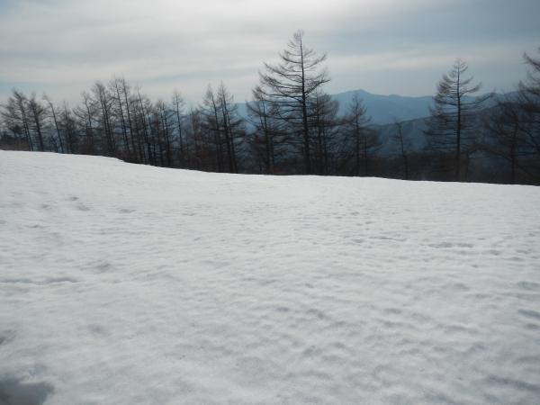 雲取山 072