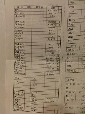 100723_血液検査結果