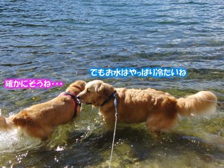 水冷たいね