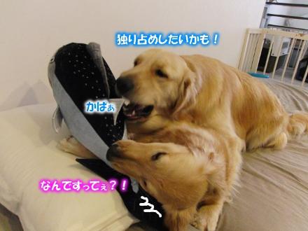 独り占め?!