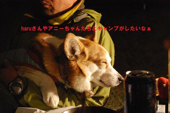 11_04_0311.jpg