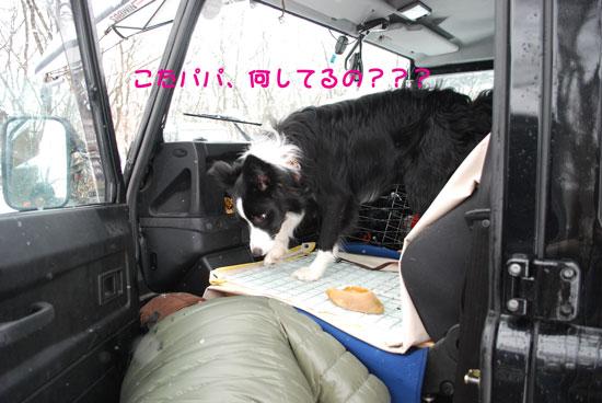2011_0224_21.jpg