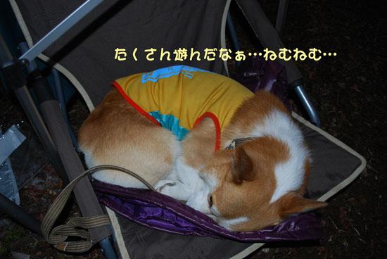2011_0224_8.jpg