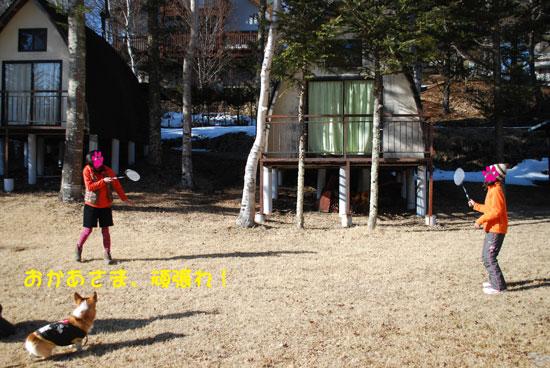 2011_0227_2.jpg