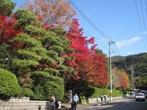 泉屋博古館前あたりの紅葉