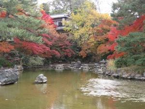 円山公園秋1
