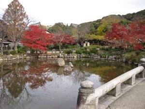 円山公園秋4