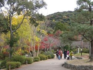 円山公園秋3