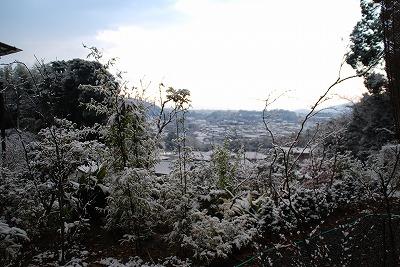 White Christmas Eve 1