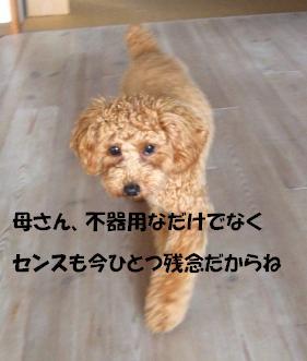 tubuyaki2104.jpg