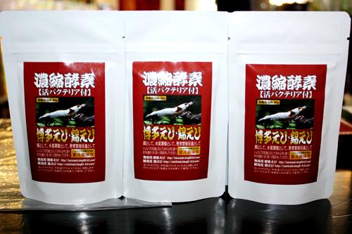 博多えび・錦えび 濃縮酵素 東海 岐阜 熱帯魚 水草 観葉植物販売 Grow aquarium