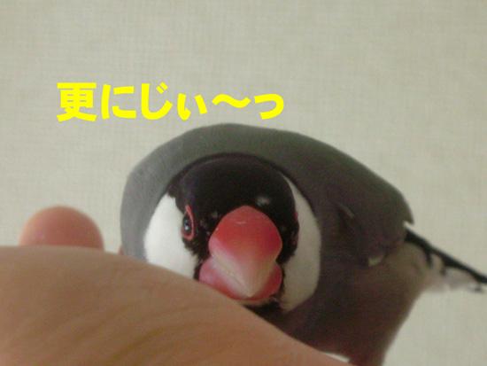 りょっ、涼!?(^_^;)